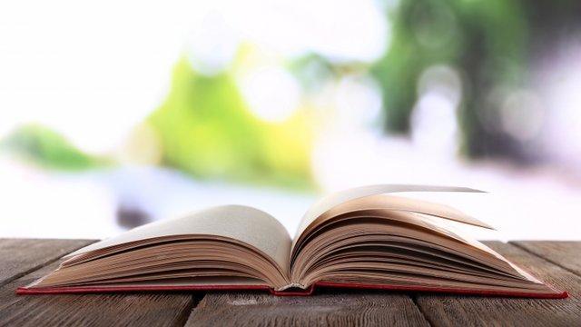 برنامه های جشنواره کتاب خوانی رضوی اعلام شد