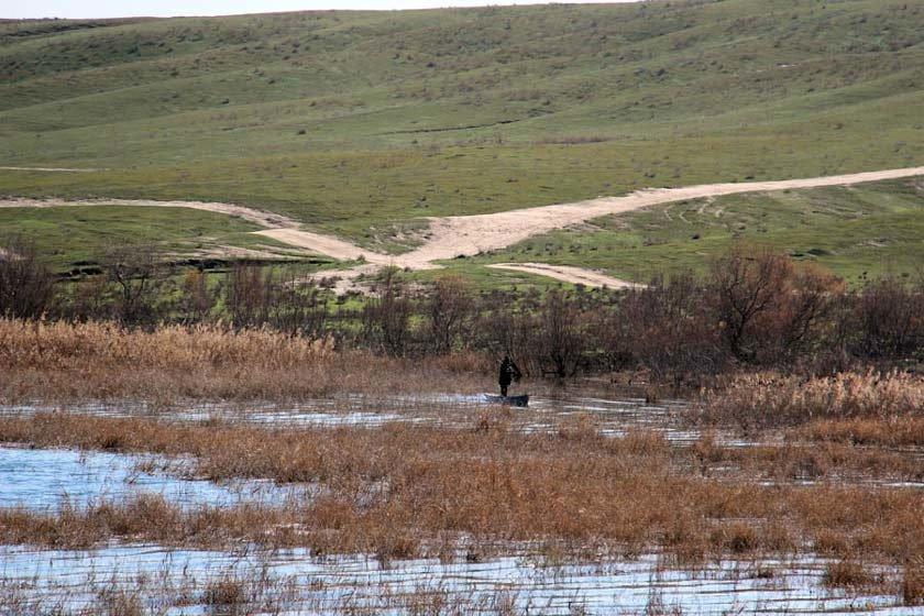 نقش مؤثر تالاب ها در جلوگیری از افزایش خسارات سیل