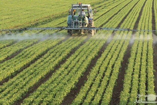 باکتری های بومی راندمان تولید محصول را افزایش می دهند