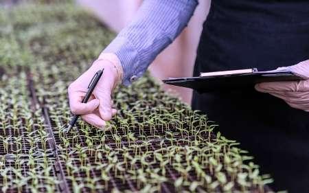 7 شرکت نانویی صنعت کشاورزی و بسته بندی در نمایشگاه نانو حاضر خواهند شد