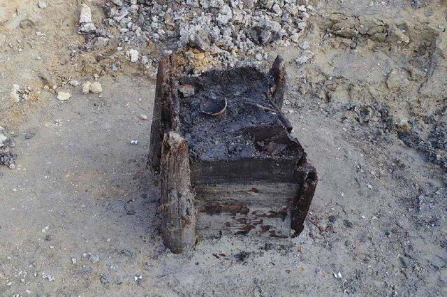 قدیمی ترین سازه چوبی جهان کشف شد