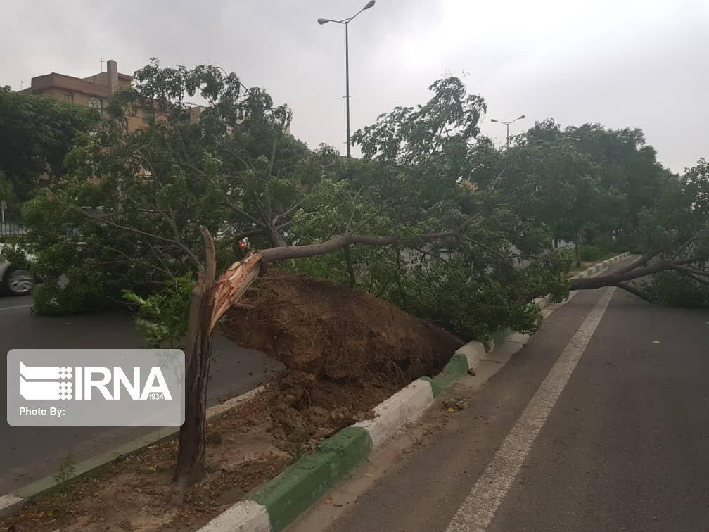 خبرنگاران قطع خط 20 کیلوولتی برق کرج در اثر طوفان