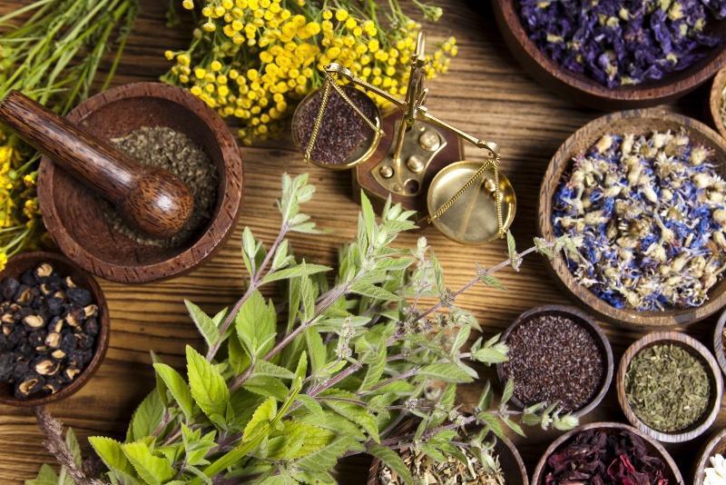 محصولات 150 شرکت تولیدکننده دارو های گیاهی صادر شد