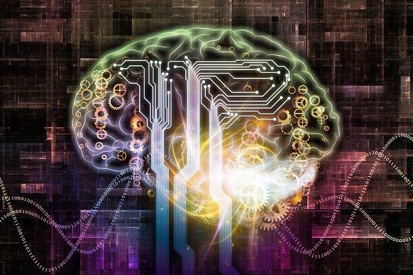 تحریک اعصاب مغز زبان آموزی را ارتقا می دهد
