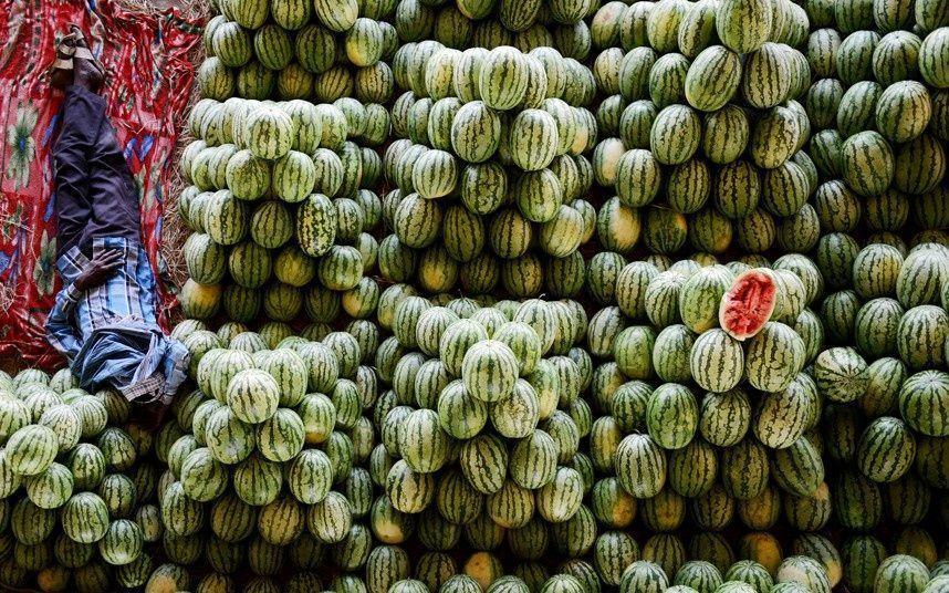 کاهش قیمت هندوانه و 8 محصول دیگر در میادین میوه و تره بار