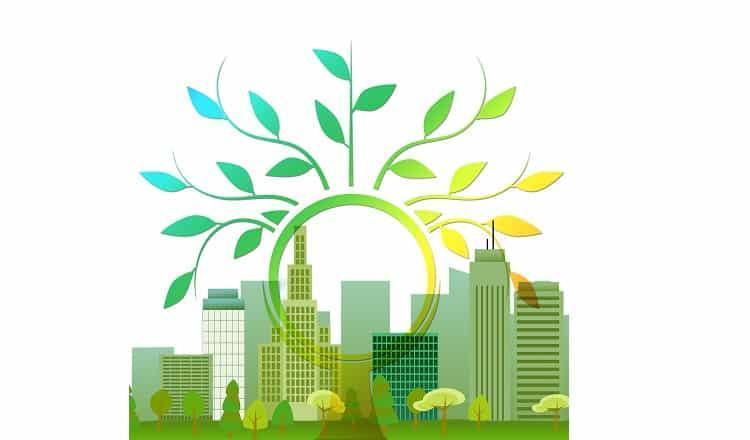 مدیریت سبز چیست و چگونه به کسب و کار یاری می نماید؟