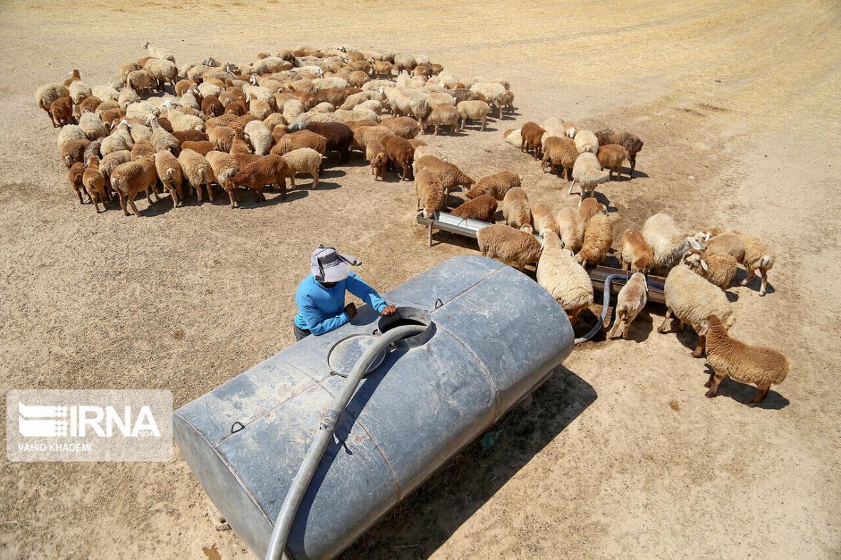 خبرنگاران 26 پروژه در مناطق عشایری البرز اجرایی شده است