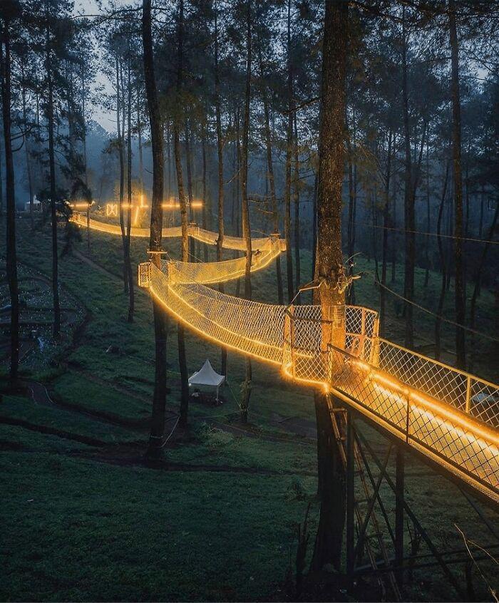 این پل معلق در یکی از جنگل های اندونزی، منظره ای شبیه داستان های پریانی ایجاد کرده!