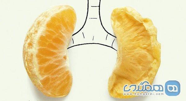 راهکارهای پاکسازی ریه با تغذیه